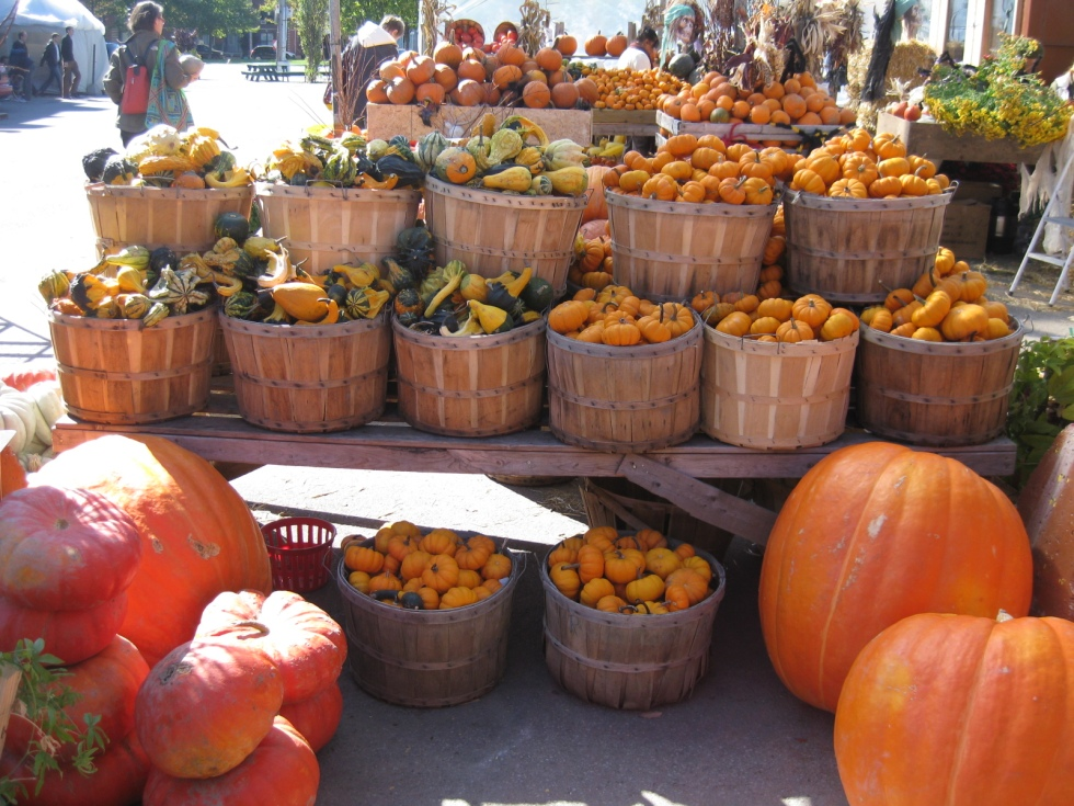 Pumpkins at Marchet Atwater Montreal