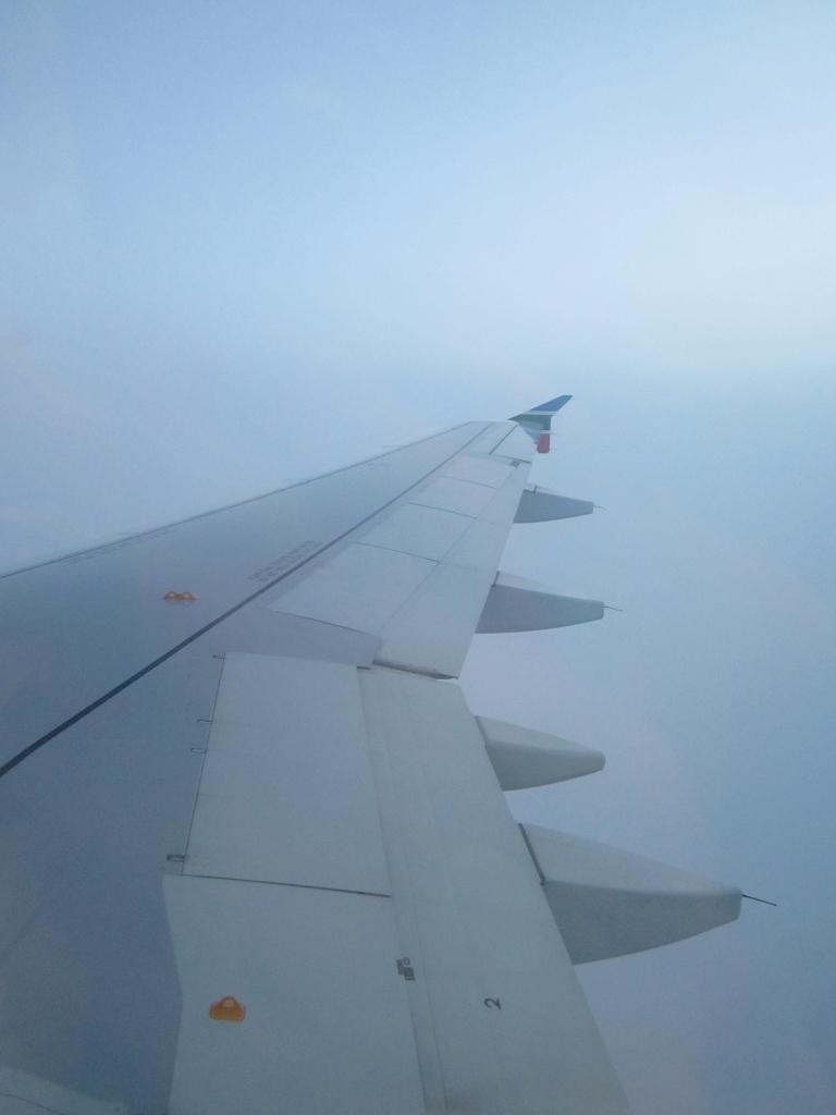 airplane anti jet-lag diet