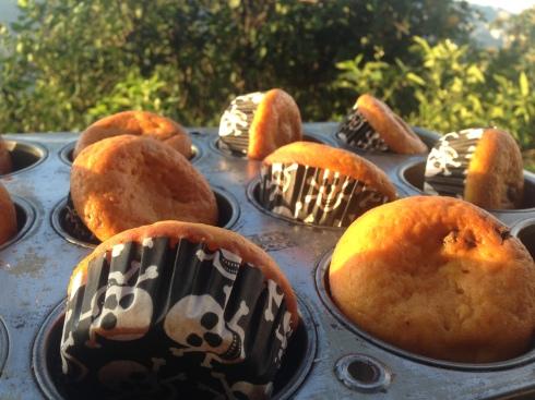 Pumpkins muffins